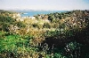 Plot of land in Dalmatia, Zadar, Dugi Otok, 135.000 €