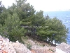 Plot of land in Dalmatia, Hvar island, Poljica, 650.000 €
